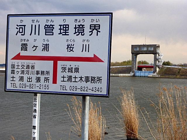 河口の標識
