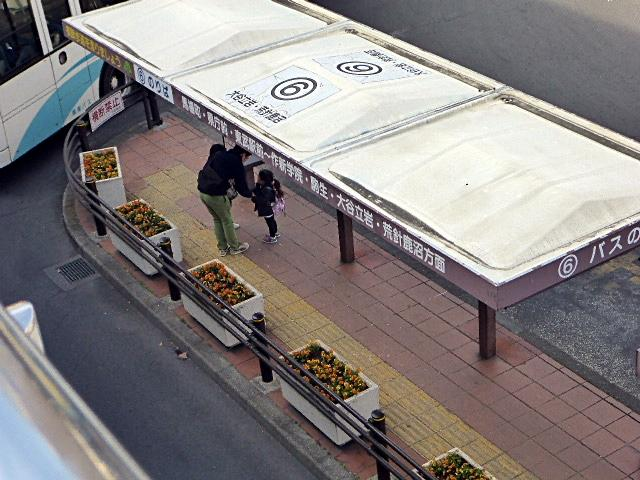 宇都宮駅前バス6番乗り場