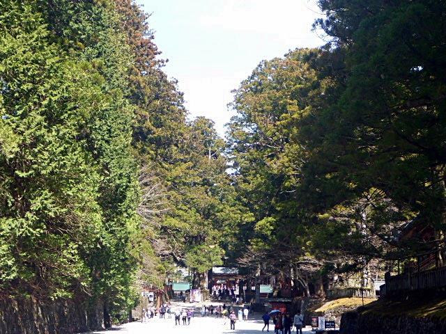 東照宮への参道