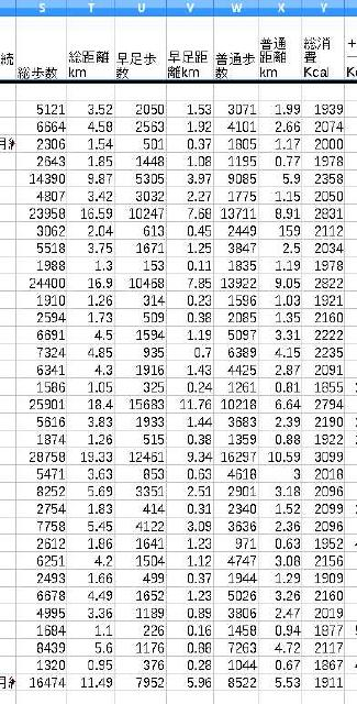 活動量計の記録